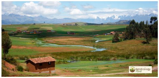 Panoramic scene of African farmland and mountains.